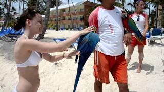 Наше свадебное путешествие в Доминикану  Barcelo Dominican Beach(, 2013-07-05T16:25:47.000Z)
