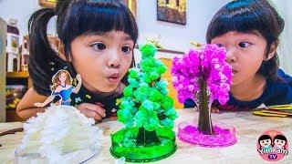 หนูยิ้มหนูแย้ม   กิจกรรมเด็กปลูกต้นไม้กระดาษ Kids Activity - Paper tree