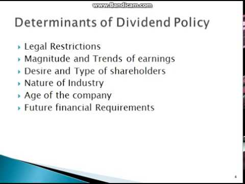 dividend policy 2 essay