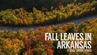 Fall Leaves in Arkansas | Aerial Drone Video