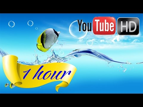 HD ♥ Instrumental Music ♥ Relaxing music ♥ Nature sounds Undersea world