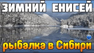 РЫБАЛКА в Сибири ЛОВИМ на реке ЕНИСЕЙ Fisher Online Новый водоём Обзор ОБНОВЛЕНИЯ