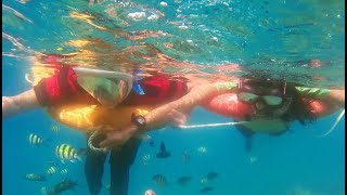 Snorkelling in Elephant Beach   Best snorkelling place in India