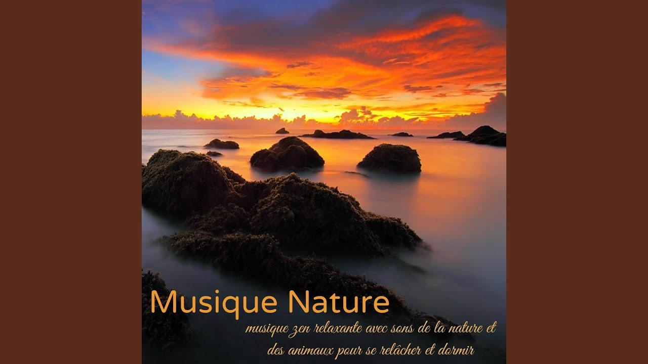 musique relaxation tibetaine