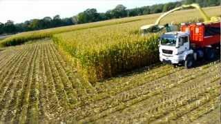 AgroTruck Stapel / Maishäckseln