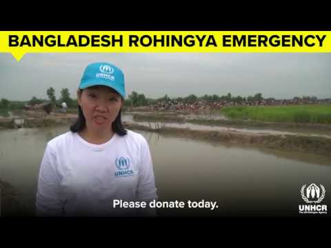 Bangladesh Rohingya Emergency - Please continue to support UNHCR