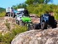 Spartans RC Crawlers, 10 Trucks in Route, Axial SCX10, Dingo, G6, Wrangler, Honcho, Rubicon...