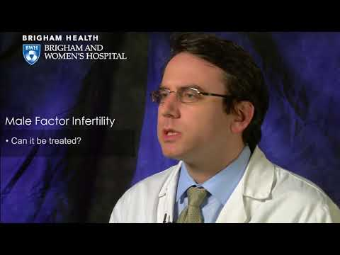 male-factor-infertility-video-–-brigham-and-women's-hospital