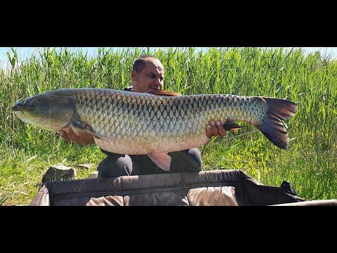 Nad Wodą #10 Rzeka Odra