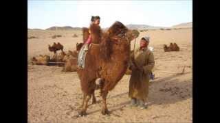 Video de Nomad Planet Agence de voyage en Mongolie - le tourisme responsable
