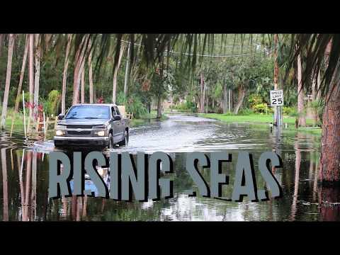 """Rising Seas: Flooding"""