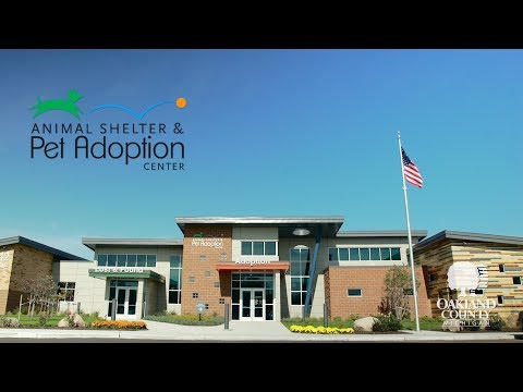 Oakland County New Animal Shelter Tour