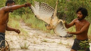 Effective Wooden Eagle Trap by Used Primitive Skills - How To Make Bird Trap 100%