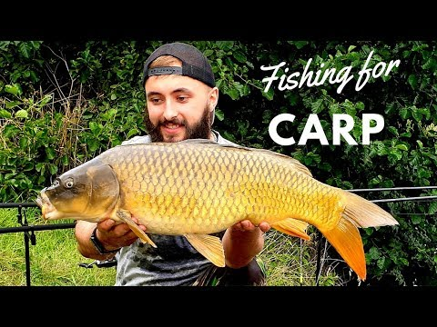 CARP FISHING - So Many FISH! - *Norfolk, UK*