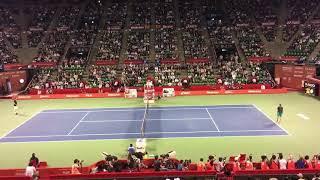 Rakuten Japan Open Tennis Championships 2017. ATP500 8.October  🎾SINGLES FINAL.