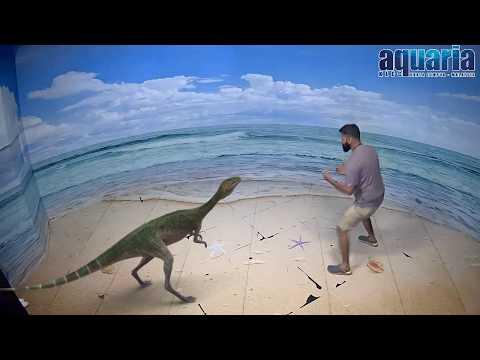 Illusion 3D Art Museum Kuala Lumpur  - Air Land Sea -latest