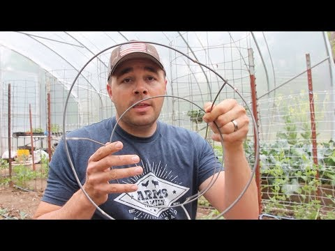 Beware of this Garden SCAM! Build Your Own Tomato Cages.