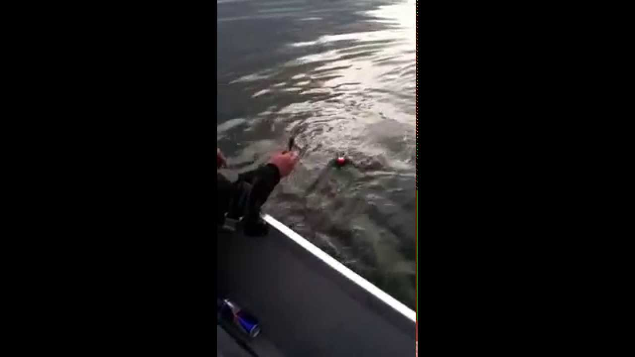 Fishing for steelhead above mcnary dam youtube for Mcnary dam fish count