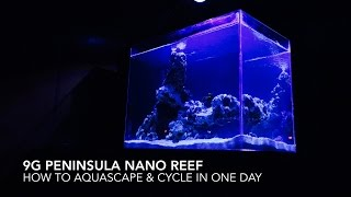 9G Peninsula Nano Reef | How to Aquascape & Cycle in One Day