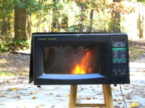 Best Microwave Plasma