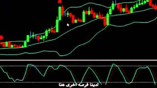 Strategy to win 10 pips daily from the forex market | فوركس