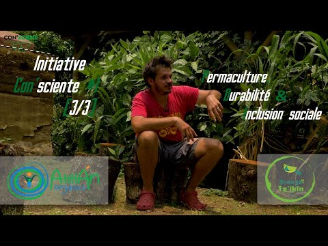 Initiative Con'sciente #1 (Part 3/3): Permaculture, Durabilité Et Inclusion Sociale