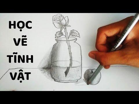 Vẽ Tĩnh Vật Lọ Hoa và Quả bằng bút chì – How to draw Still Life #1