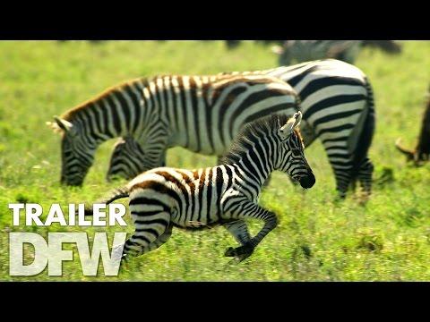 Nature 3D trailer NL