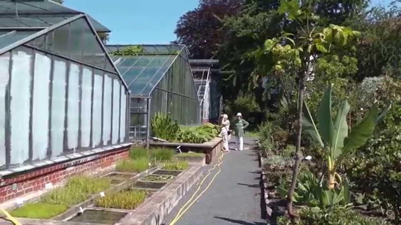 Botanischer Garten Göttingen Youtube