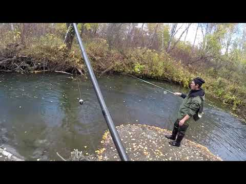 Ловля - Рыбалка