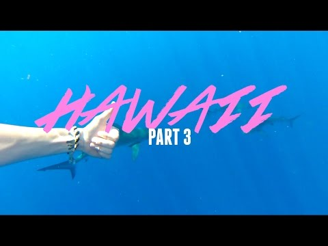 swimming-with-sharks-and-turtles-|-hawaii-part-3