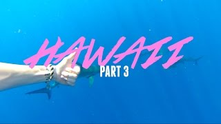 SWIMMING WITH SHARKS AND TURTLES | Hawaii Part 3