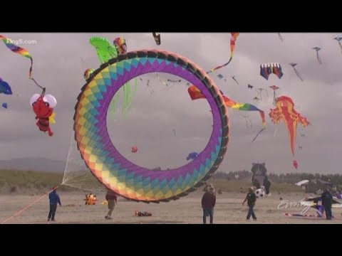 The annual Washington State International Kite Festival in Long Beach is  fun for all ages - KING 5 E