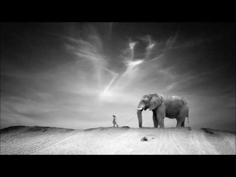 'Ten Walls' - Walking with Elephants (Original Mix)