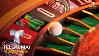 ¿Quién es el favorito para llevarse la Liga MX? | Liga MX | Telemundo Deportes