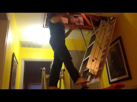 Murphy Larkin Attic Stairs Attic Ladders Doovi