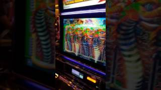 massive  win with 3.00 max bet at Cosmopolitan casino in LAS VEGAS 2017