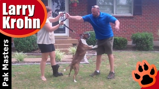 "How To Train Aggressive Dogs ""With Pak Masters Dog Training Of Nashville"""