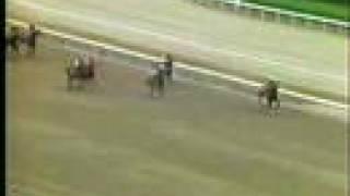 LUTZ - G.P. Asoc. Latinoamericana de Jockey Clubes 1986