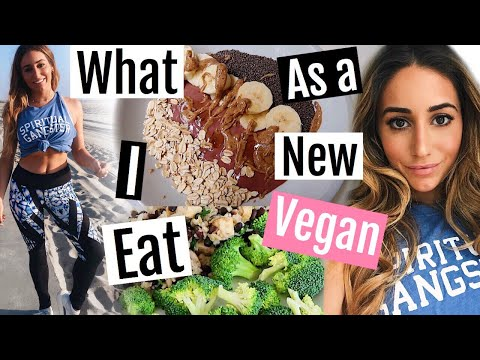 HEALTHY WHAT I EAT IN A DAY AS A NEW VEGAN //Easy meals on the go 2018