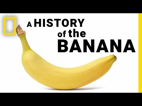 The Surprising History of Bananas in Under 2 Minutes | National Geographic