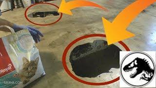 ✅Nettoyer des taches d'HUILE sur le Sol du Garage 🦖 avec l'aide des DINOS #Jurassic