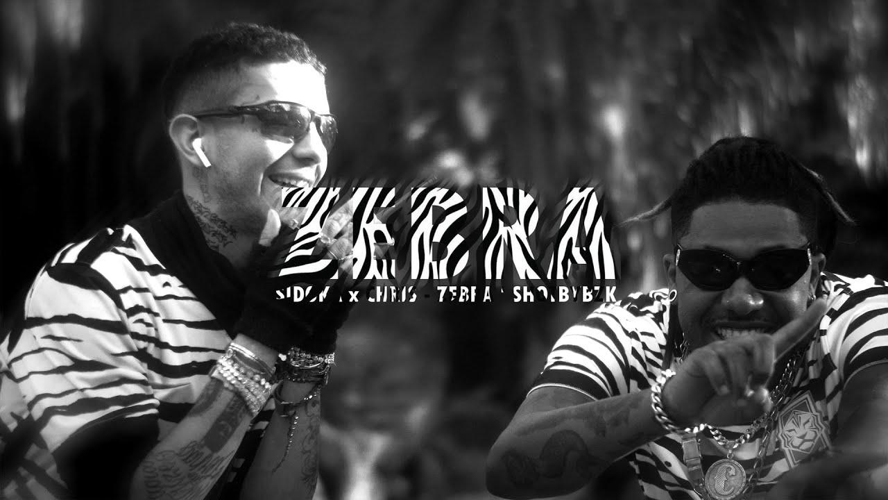 Download Sidoka x Chris - ZEBRA [Shot by Bzk] prod @LLBEATZ
