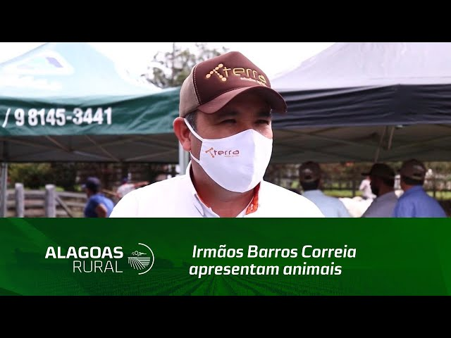 Irmãos Barros Correia apresentam animais que serão ofertados no XIX Leilão Nelore IBC