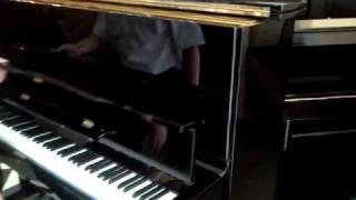 Piano Rosenkranz.3gp