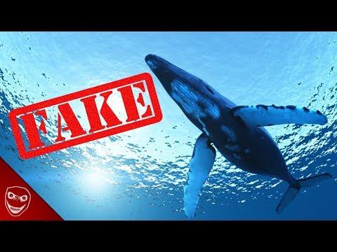 Ist die Blue Whale Challenge nur ein Fake? - Die Wahrheit!