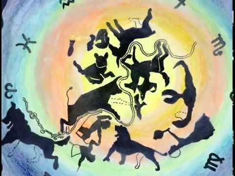 Kingston Zodiac