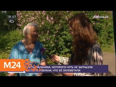 Соседи рассказали о семье, в которой якобы мальчика покусали собаки - Москва 24