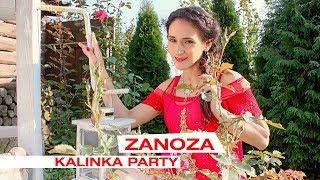 Zanoza - Kalinka Party (Official Video)