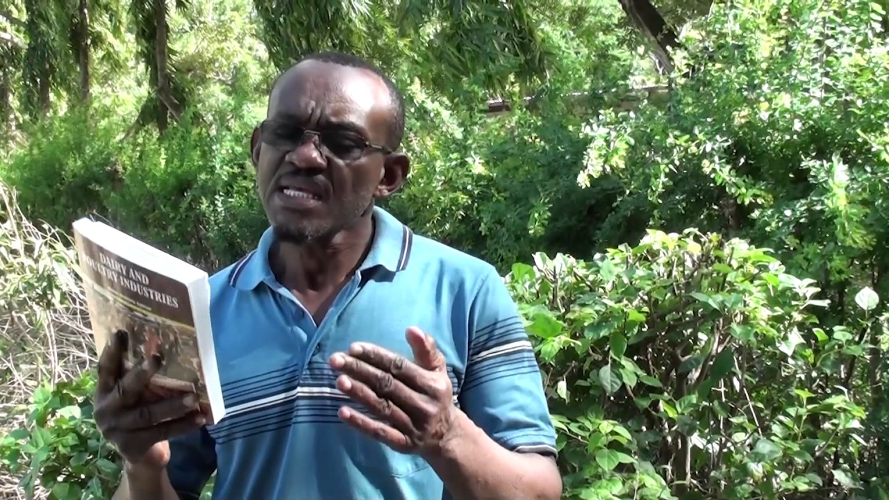 tanzanian poultry farmers benefit from in country training